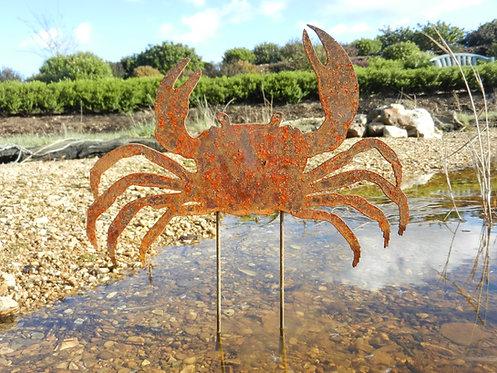 Rusty Metal Crab