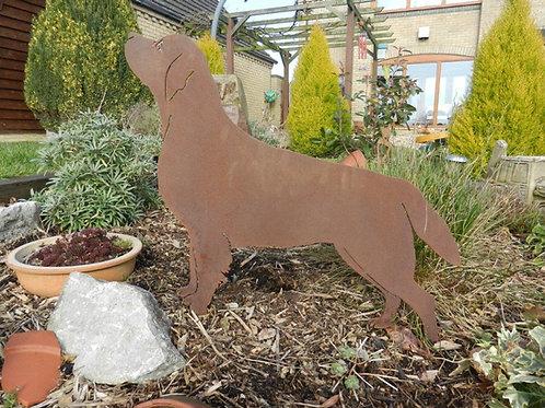 Rusty Metal Labrador Dog
