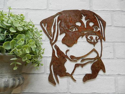 Rusty Metal Rottweiler Head