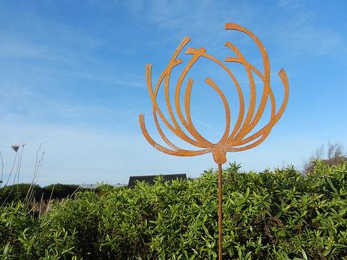 Rusty Metal Wild Flower Seed Head Stake
