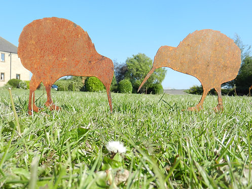 Rusty Metal New Zealand Kiwi Birds (3)