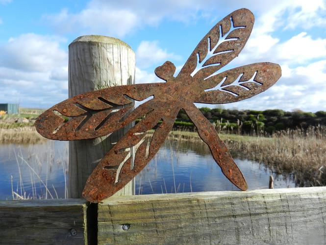 Rusty Metal Dragonfly Garden Art