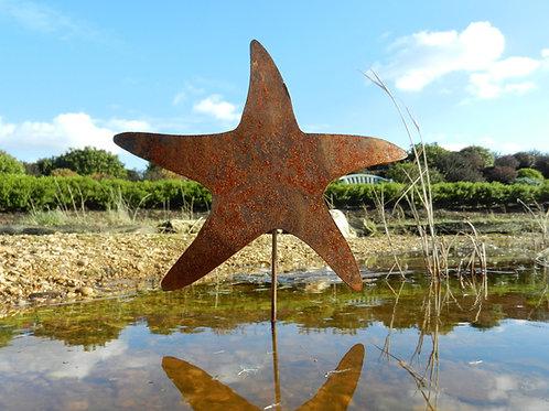 Rusty Metal Starfish