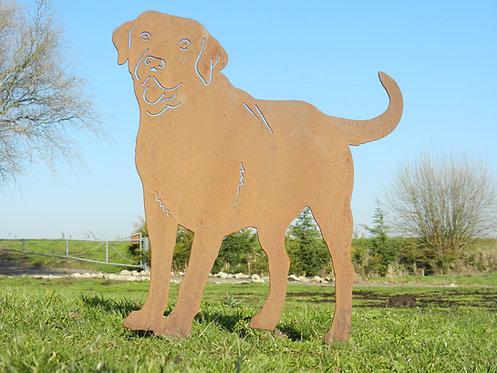Rusty Metal Labrador