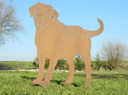 Rusty Metal Labrador