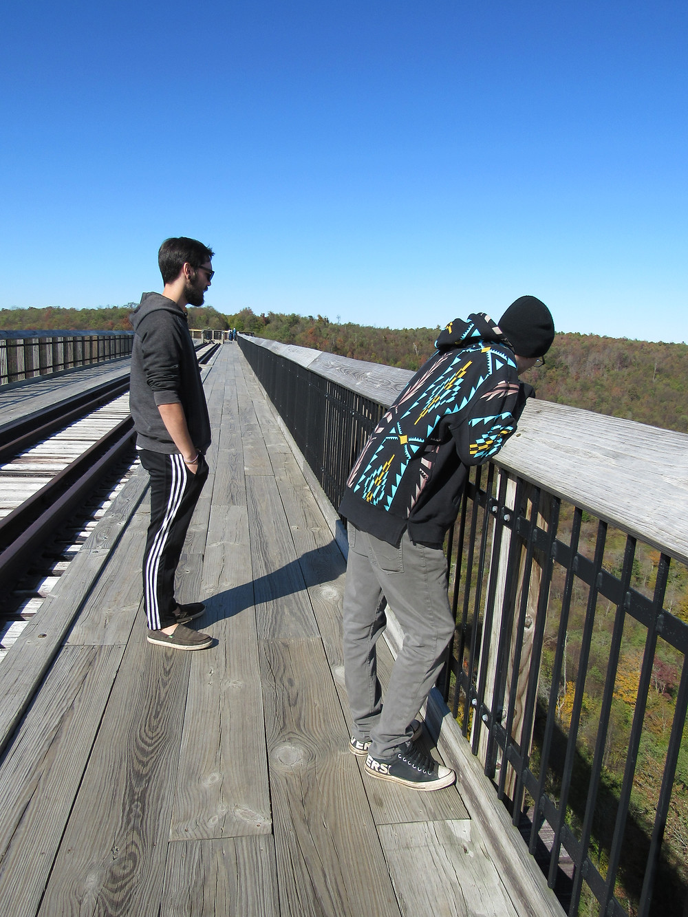 Two men standing on a bridge and observing a valley.