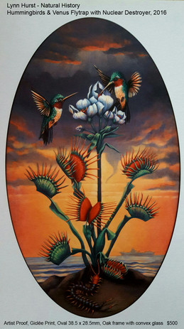 Natural-History-–-Hummingbi.jpg