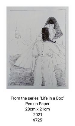 Lorene Taurerewa #4 Life in a Box series.jpg