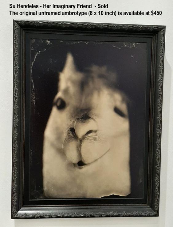 Su Hendeles - Her Imaginary Friend  - Sold