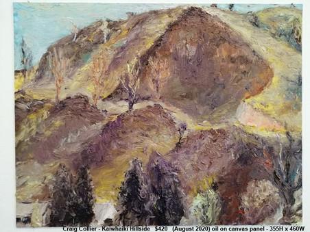 Craig Collier - Kaiwhaiki Hillside   $420