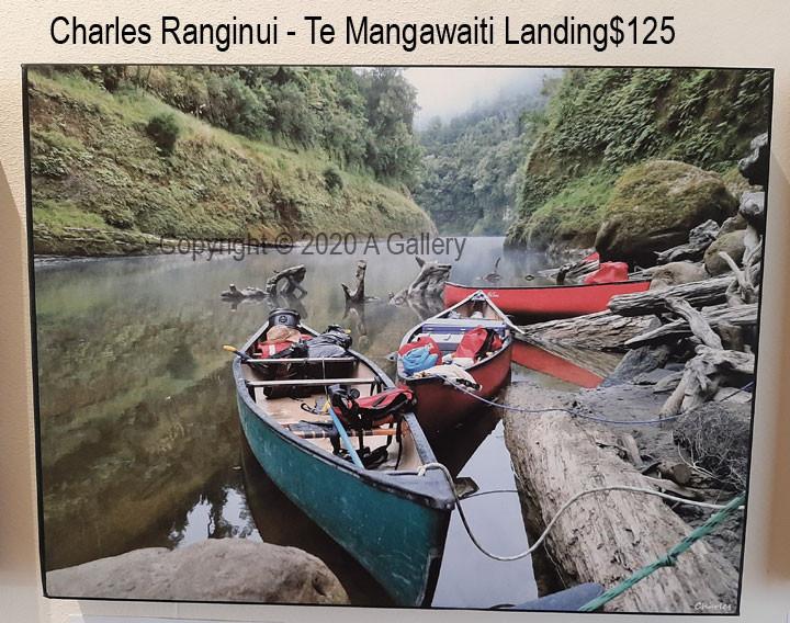 Charles Ranginui - Te Mangawaiti Landing