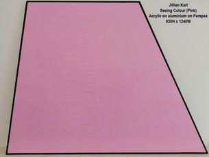 Jillian Karl - Seeing Colour (Pink) - POA