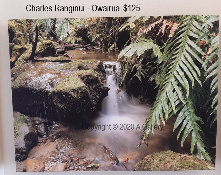 Charles Ranginui - Owairua