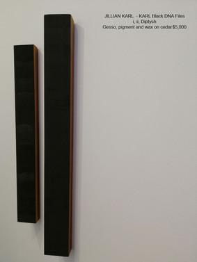 JILLIAN KARL -  KARL Black DNA Files i, ii Diptych (right view)