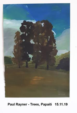 Paul Rayner - Trees, Papaiti   15.11.19- Sold