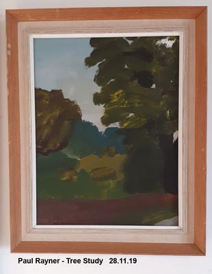 Paul Rayner - Tree Study   28.11.19 - Sold