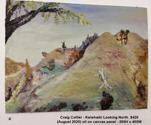 Craig Collier - Kaiwhaiki Looking North  $420