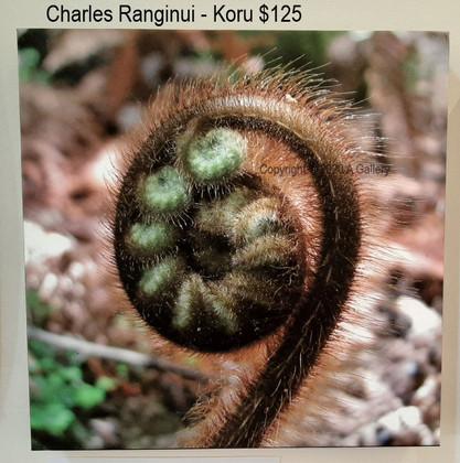 Charles Ranginui - Koru
