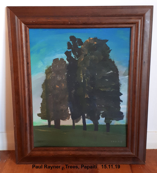 Paul Rayner - Trees, Papaiti   15.11.19  Sold