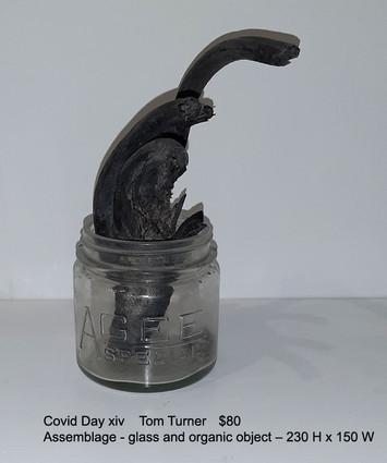 Covid Day xiv  -  Tom Turner  $80