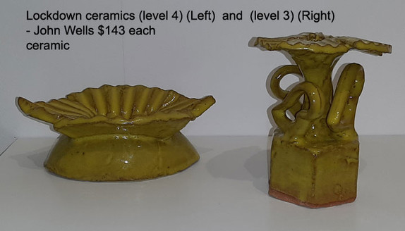 Lockdown ceramics (level 4)(Left)  and  (level 3) (Right) - John Wells $143 each