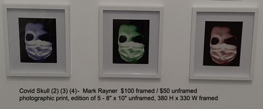 Covid Skull (2) (3) (4)  -  Mark Rayner  $100 framed / $50 unframed