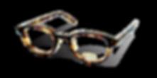 H-Fusion Eyewear.png