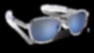Randolph Eyewear 02.png