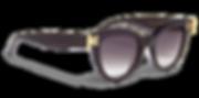 GreyAnt Eyewear 02.png