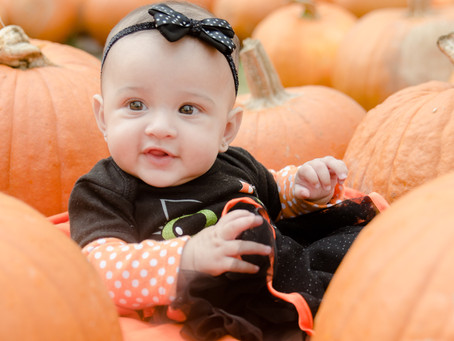 It's Time for Pumpkin Patch Photos