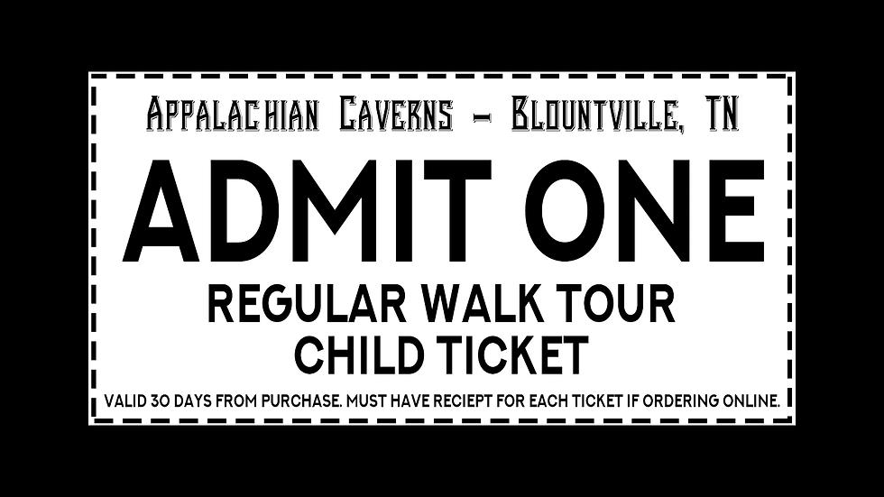 Regular Walking Tour - Child Admission Ages 2-12