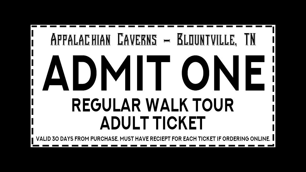 Regular Walking Tour - Adult Admission Age 13+
