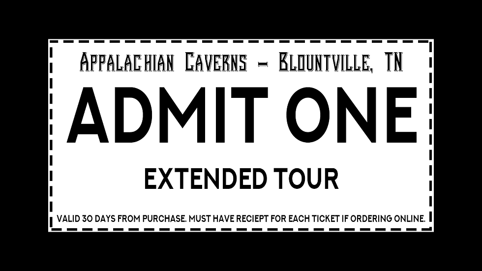 Extended Tour Admission All Ages