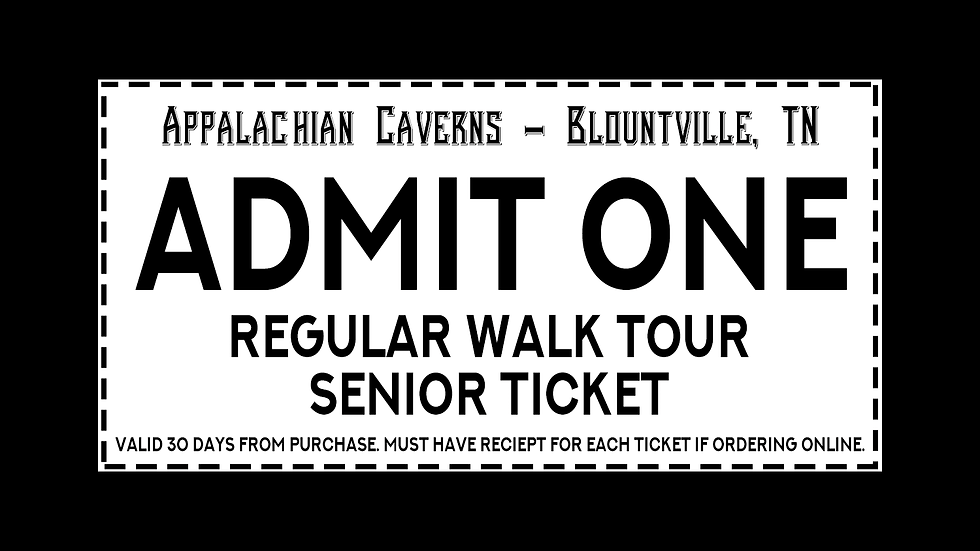 Regular Walking Tour - Senior Citizen Admission Ages 60+