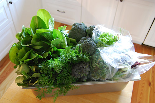 20 Week Organic Veggie Share from our friends at Nourishing Acres