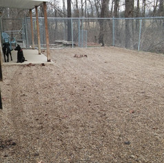 Front Play Yard