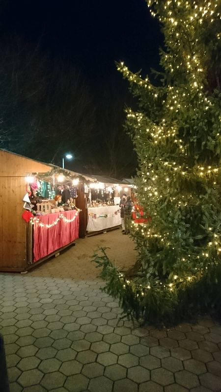 Aesch_Weihnachtsmarkt_2017-12-01.jpg