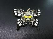 Schmetterling_IMG_2179_klein.jpg