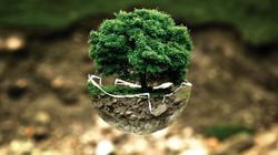 Ambiente e Sustentabilidade