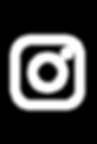 wsi-imageoptim-new-logo-instagram-.png