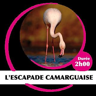 escapade-camarguaise.png