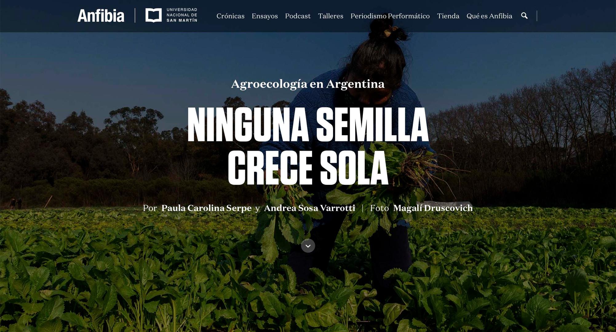 Agroecologia Magali Druscovich_1.jpg