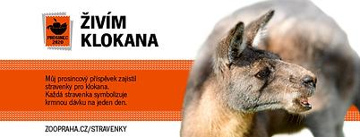 10-klokan_widget-FB_820x312px.png