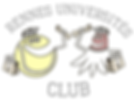 Tennis, bretagne, rennes, ligue, comité, rennes université club,