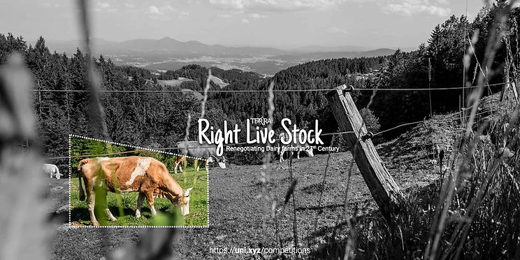 right-live-stock