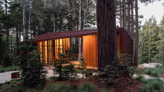 BETTER PLACE FORESTS – Visitor's Center | OpenScope Studio