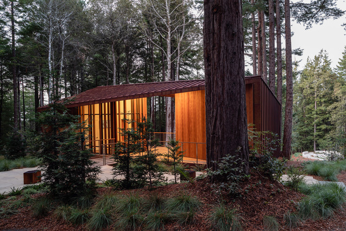 better-place-forests-visitors-center-openscope-studio
