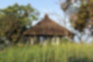 tree-villa-at-forest-hills-architecture-brio
