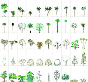 ARCHIOL_RESOURCES_TREES_05.jpg