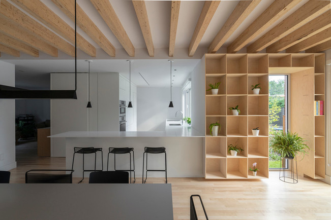 patricia-residence-dupont-blouin-architects